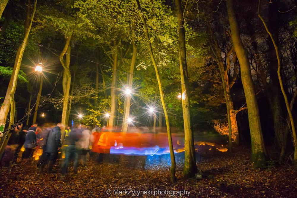 Trees-woodlands-8628.jpg