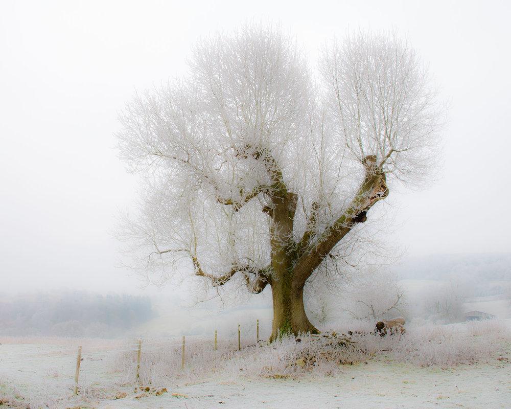 Winter on Bredon Hill