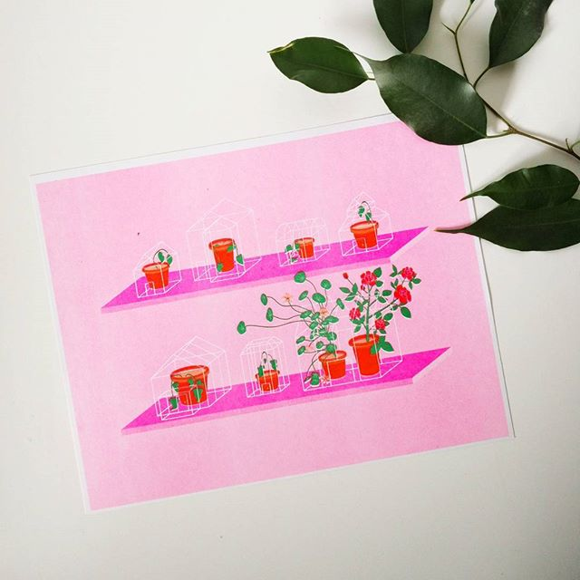 My little risograph print 'Companion Plants' is hanging up @northerncontemporary until March 21st as part of Never Real and Always True, an exhibition highlighting mental health. Unframed riso prints are available as well as other lovely artworks. A portion of the profits will be donated to the Toronto Distress Centre, so pop in and check it out 💃  #riso #risograph #plants #people #mentalhealth