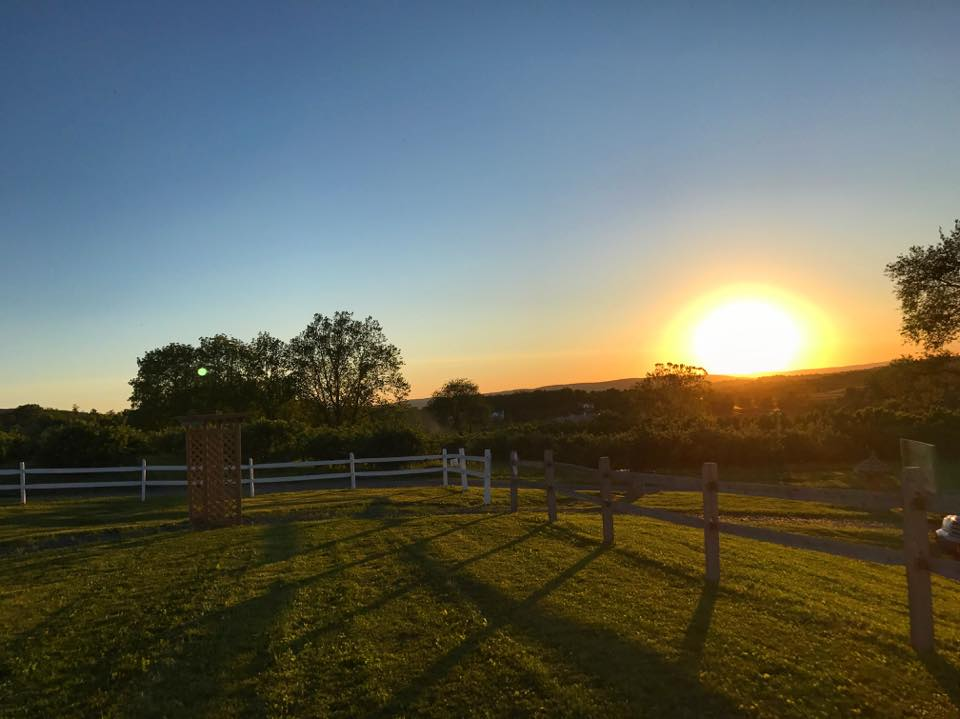 Picture of sunset overlooking cidery yard