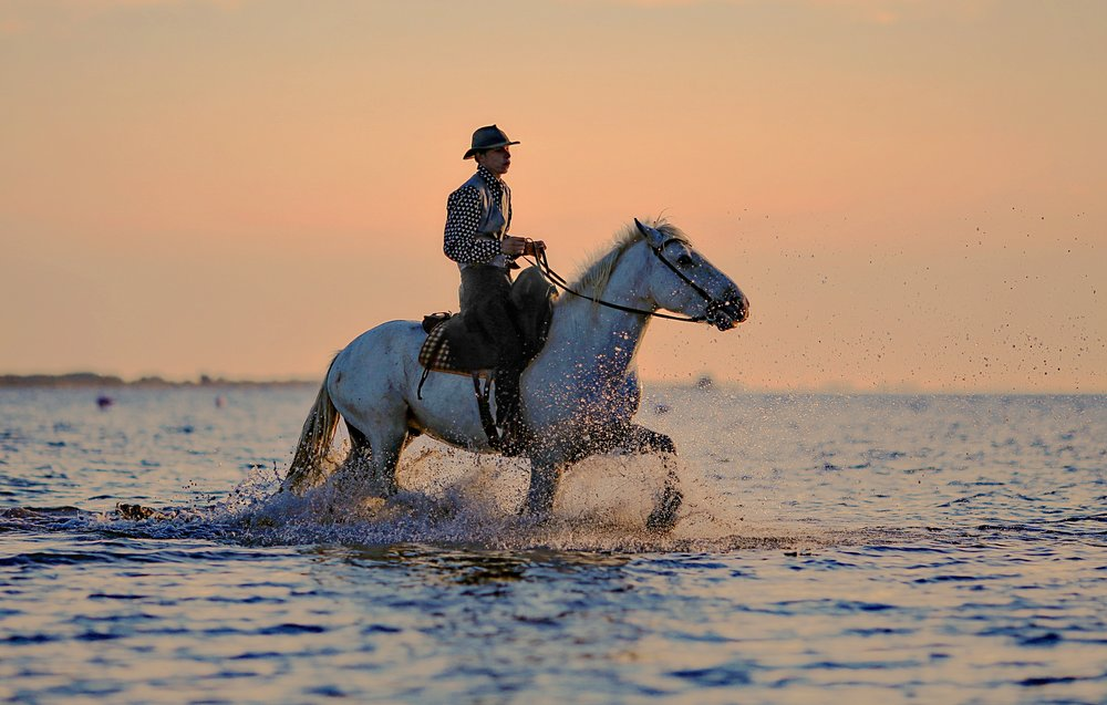negative-space-man-horse-cowboy-hat-sea-water-photo-graphe.jpg
