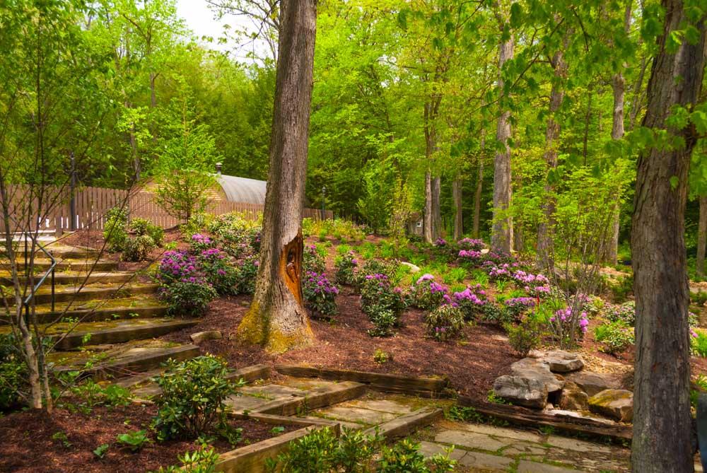 Fernstone Flowers & Landscaping-3.jpg