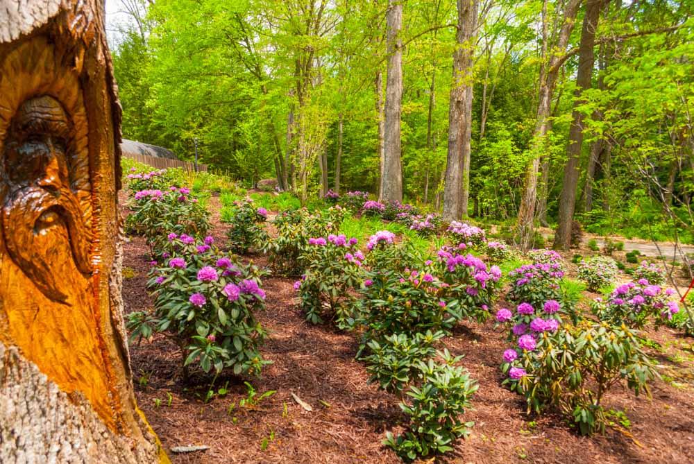 Fernstone Flowers & Landscaping-6.jpg