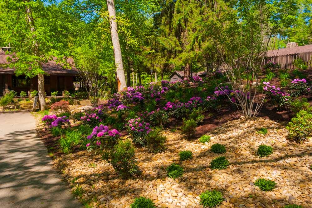 Fernstone Flowers & Landscaping-36.jpg