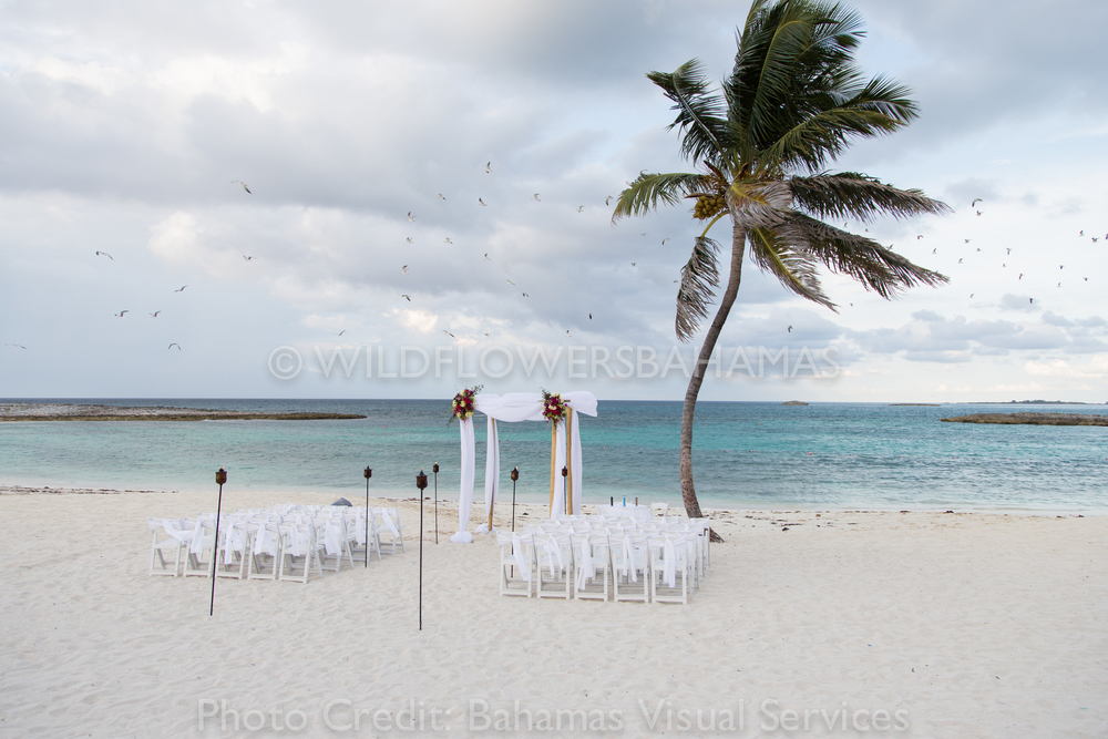 Wildflowers-Bahamas-Weddings-Events-Decor-Floral-37.jpg
