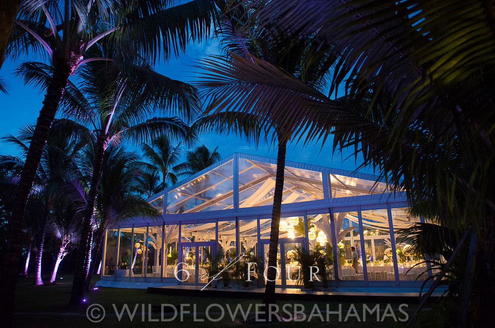 Wildflowers-Bahamas-Weddings-Events-BD-35.jpg