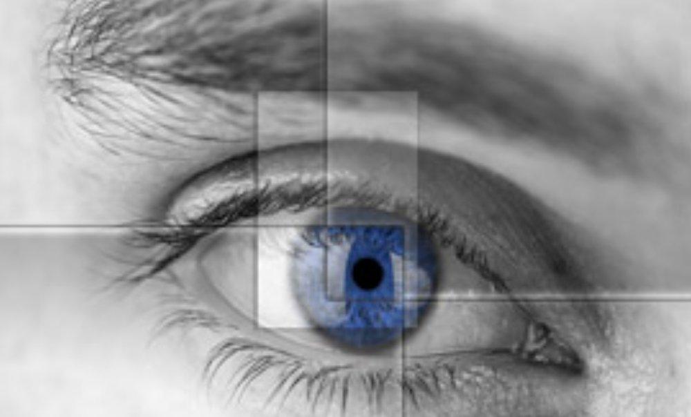 rapid eye.jpg