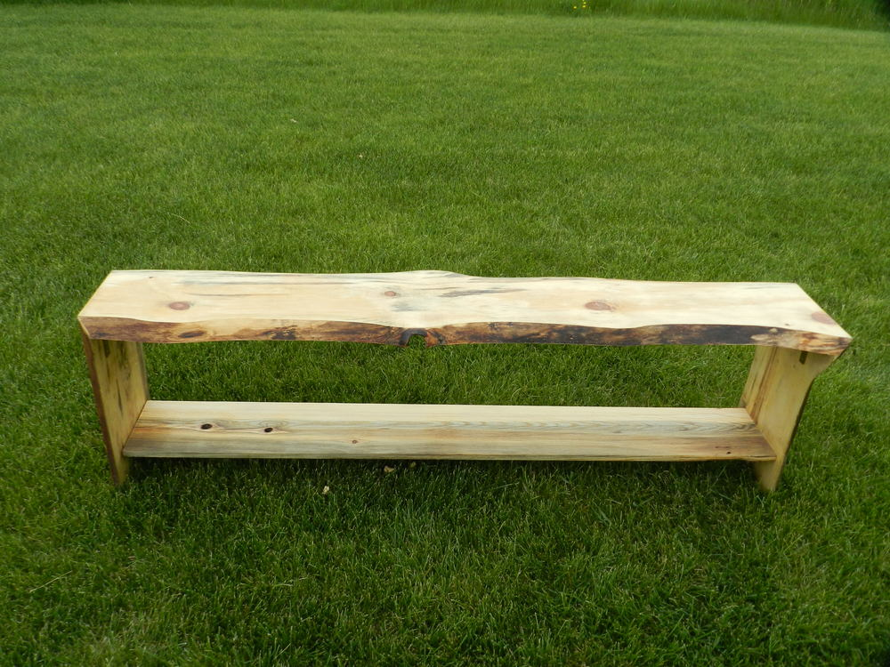 Beetle Kill Bench