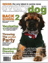 everyday dog (fall 2010) Check out the style guide for the masculine pup featuring bentley B's Hendrix and Beatles tees on page 55.