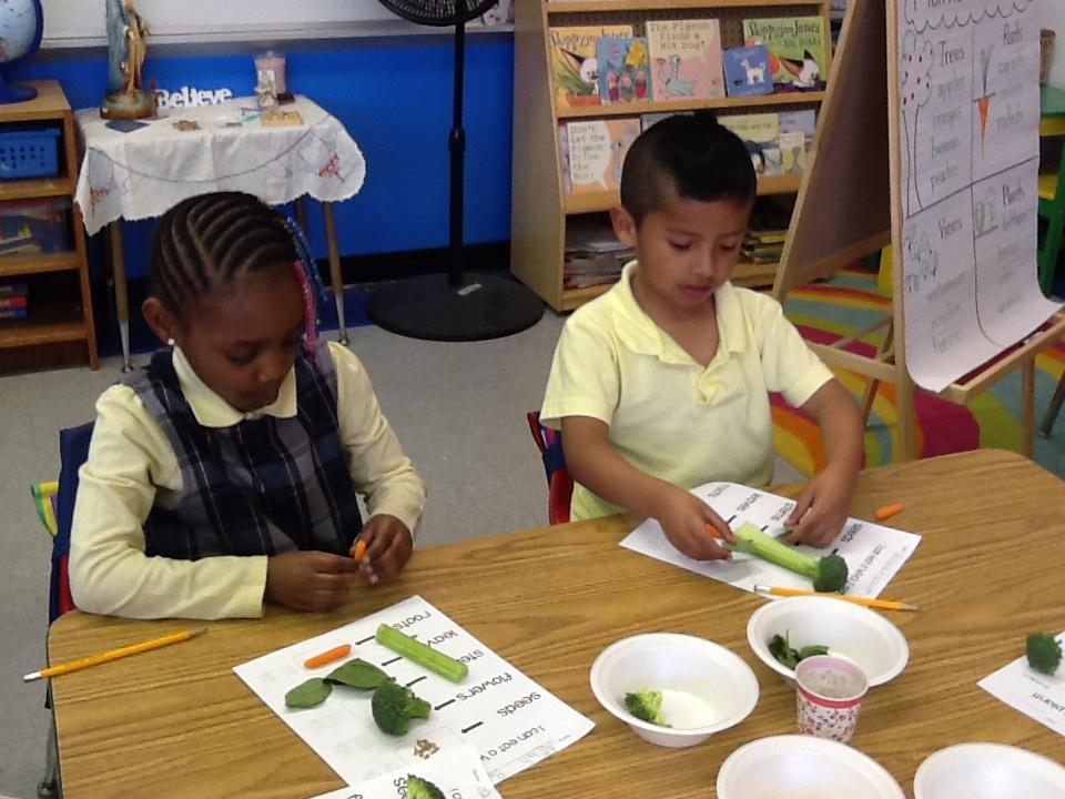 Kindergarten Nutrition.JPG