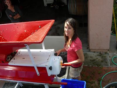 garagiste+harvest+2009+103.jpg
