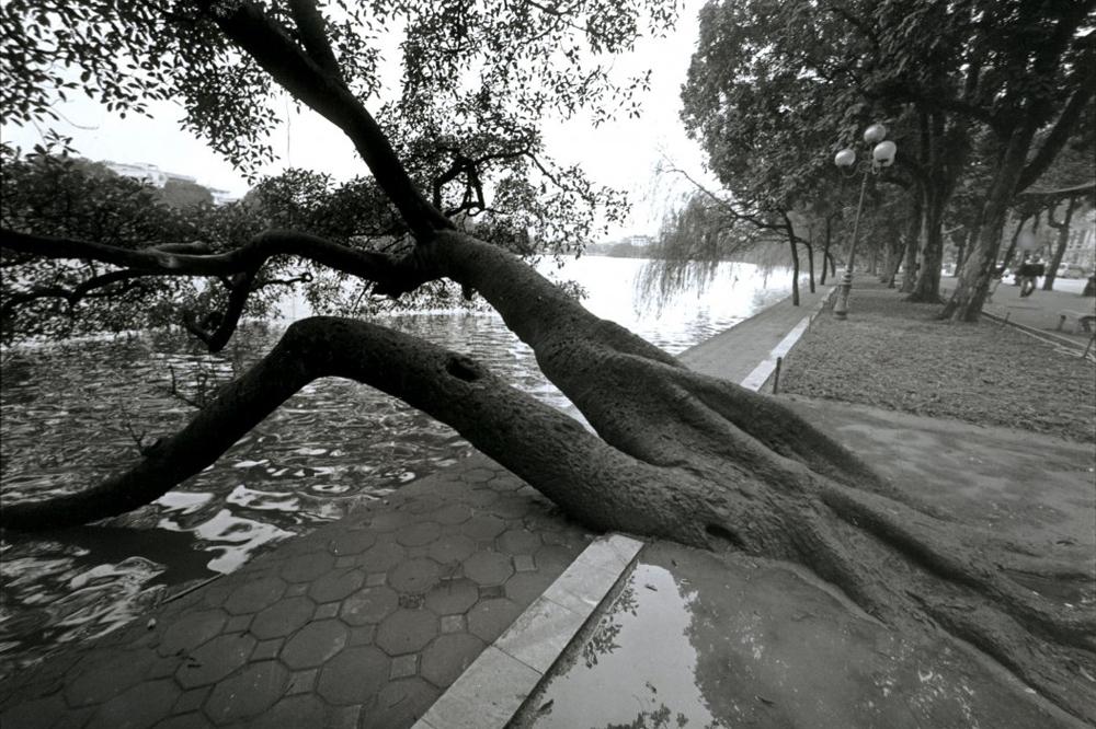 Hoan Kiem Lake, b&w version, Hanoi, Vietnam (2015)