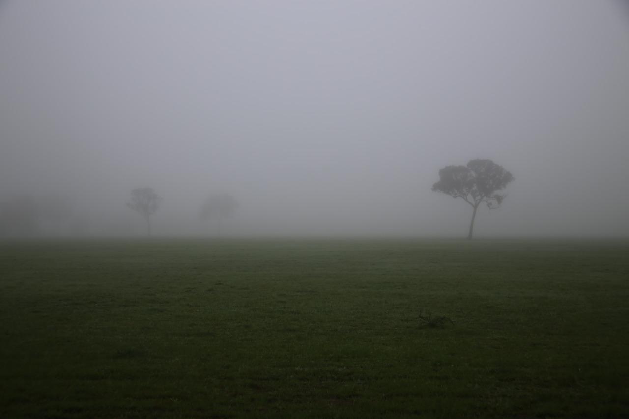 Victorian fog