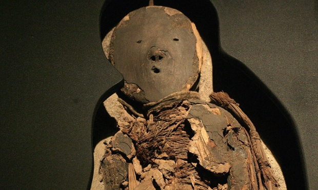 Chinchorro mummy of a child on display during an exhibition at La Moneda presidential palace, Santiago. Photograph: Claudio Santana/Getty