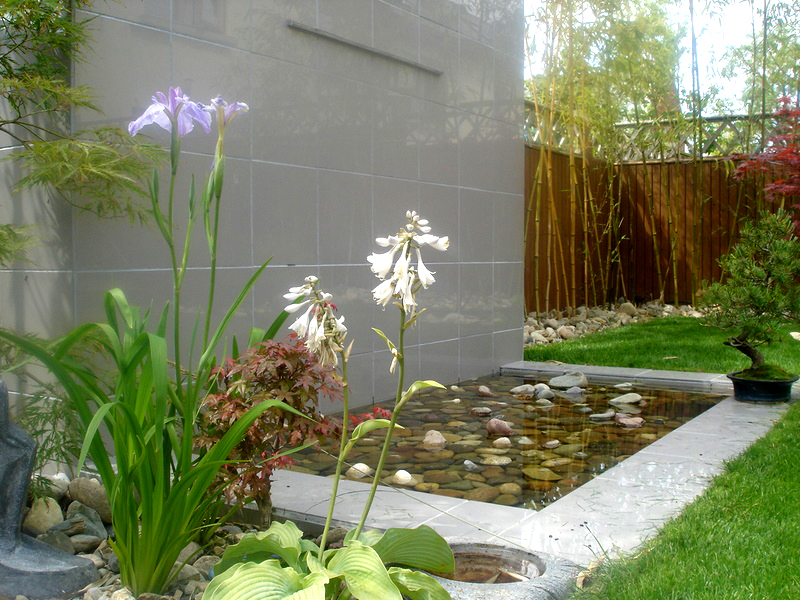 Polished porcelain water wall with beach cobble pond.