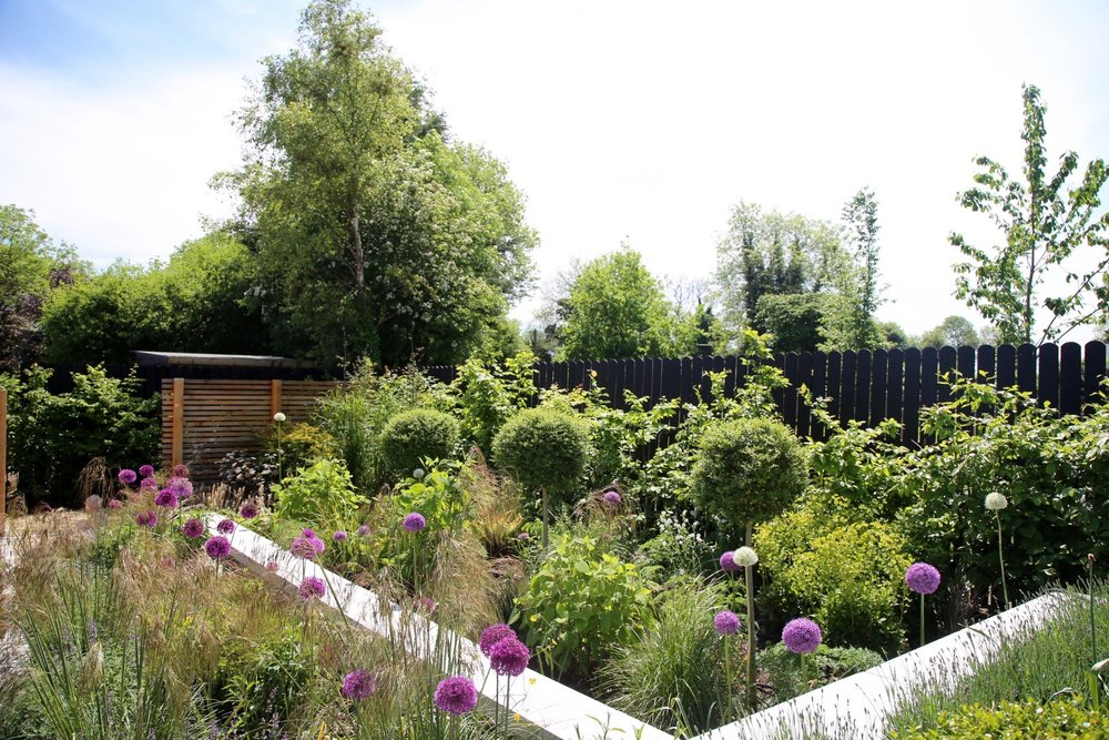 Garden design - Contemporary Country Garden