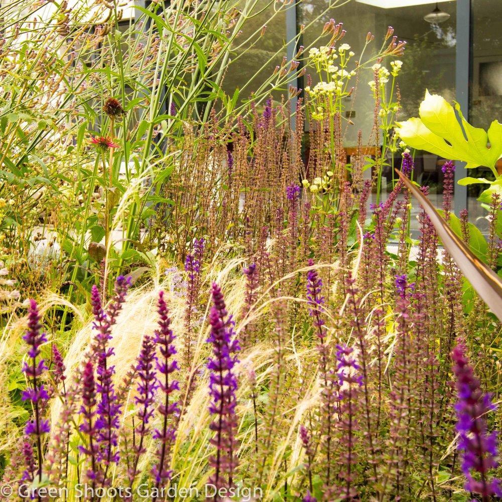 Perennial Planting Design