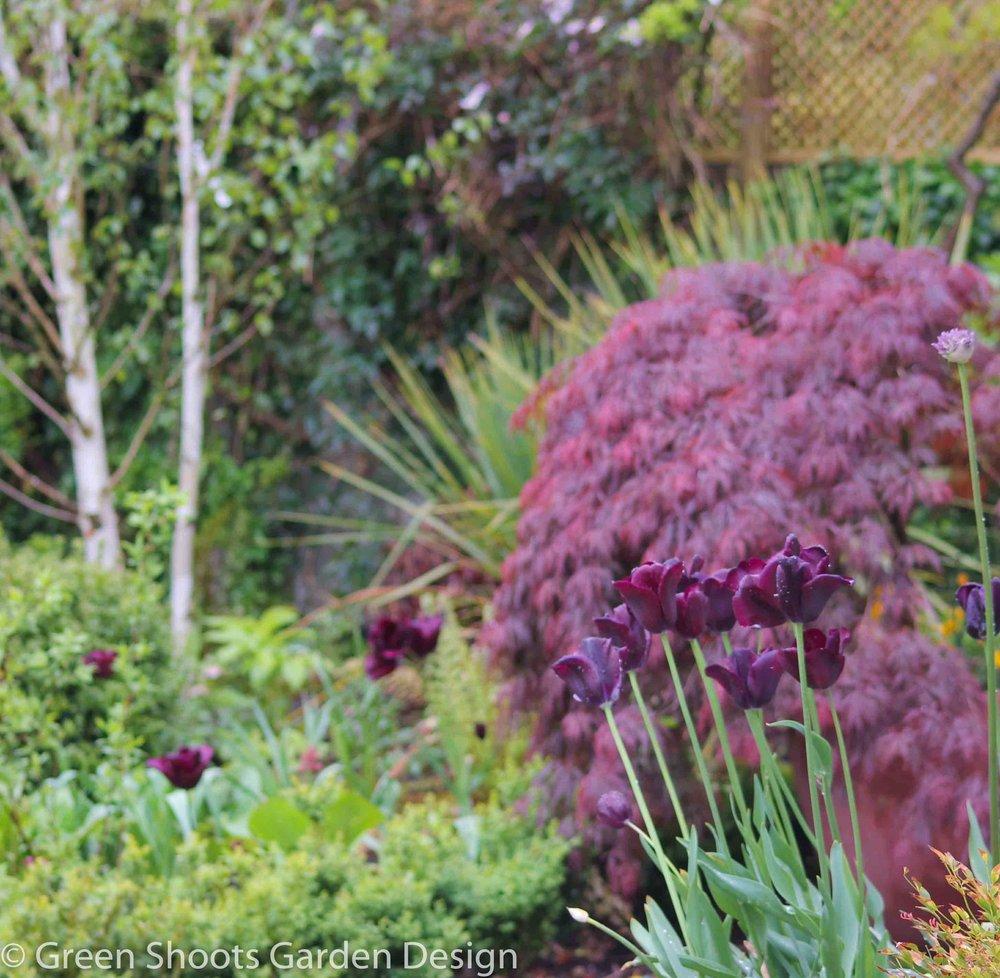 Garden design - planting