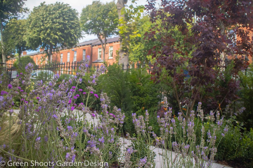 City Garden - Front Garden Design