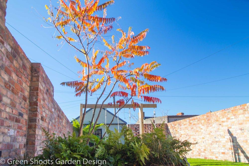 Garden design - Architectural Planting