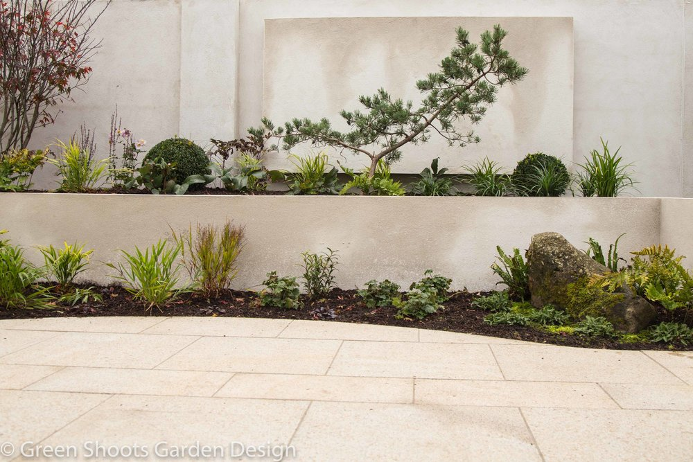Bonsai pine & wall feature