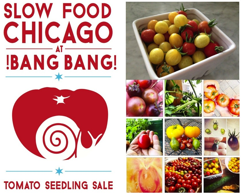 Join us this Saturday, May 14th, 2016 for our Annual Heirloom Tomato Seedling Sale at Bang!Bang! Pie Shop.