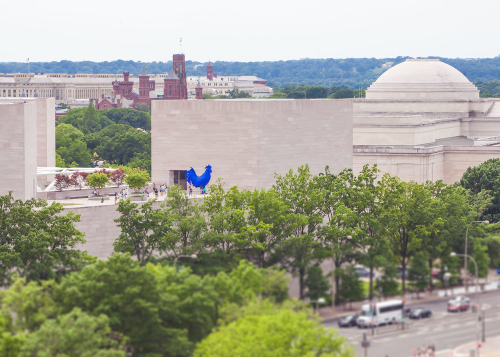 Capitol from Charlie Palmers Rooftop - 050.jpg