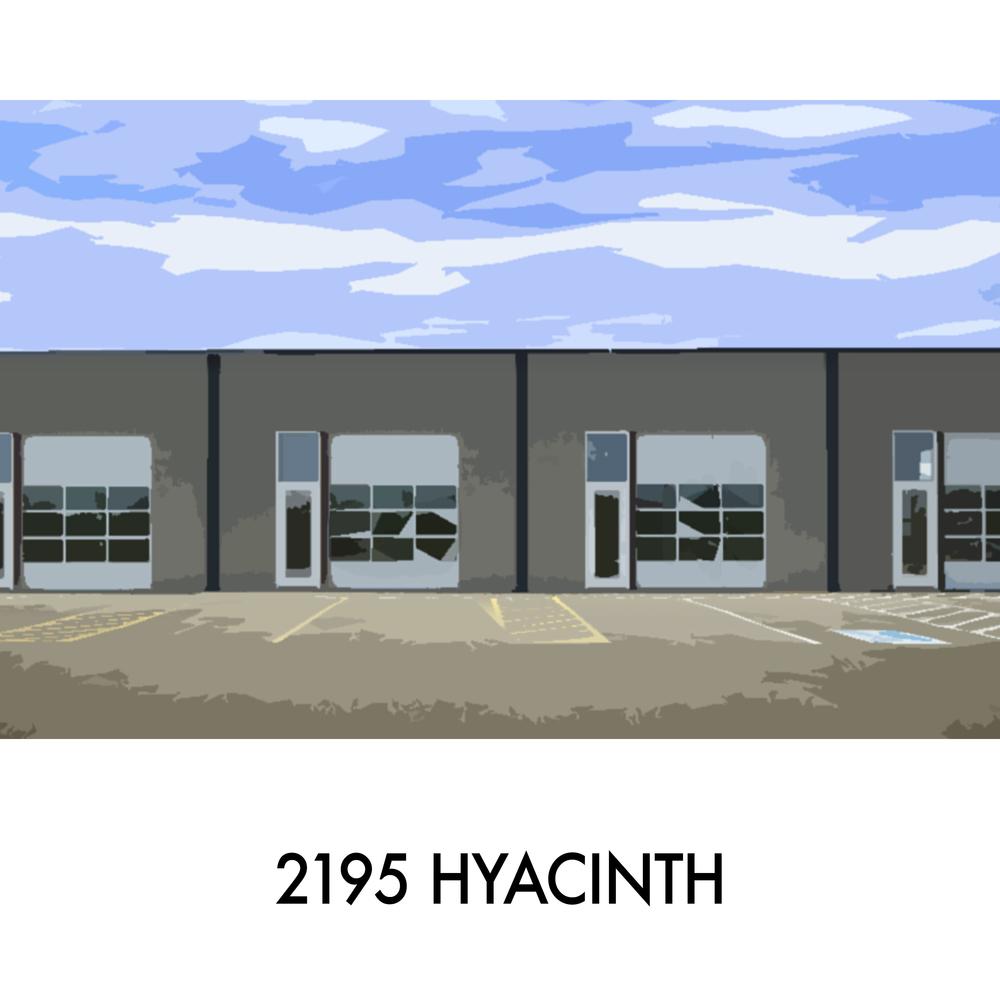 2195Hyacinth_frontpage.jpg