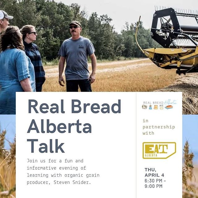 Join us THIS THURSDAY and meet Steven Snider!⠀ ⠀ We'll chat with him about everything related to organic grain production and my favorite and yours, BREAD!⠀ ⠀ Steven will talk for about 30 minutes followed by a Q&A session. Snacks from the Italian Centre, bread baked by Kaelin and Jens of Real Bread Alberta, and non-alcoholic drinks are included in the ticket price.⠀ ⠀ Get your tickets today! Click the link in our bio! ⠀⠀ https://buff.ly/2WEk3Wz⠀ ⠀ @realbreadalberta⠀ 📷 @mushroomsandthyme⠀ ⠀ #yeg #yegfood #yegfoodie #yegbread #yyc #yycfood #yycfoodie #yycbread #edmonton #calgary #realbread #realbreadalberta #exploreedmonton #explorecalgary #alberta #explorealberta #yegevents #organicgrain #travelalberta #eatalberta #eatlocal #support #shoplocal #supportsmallfarms
