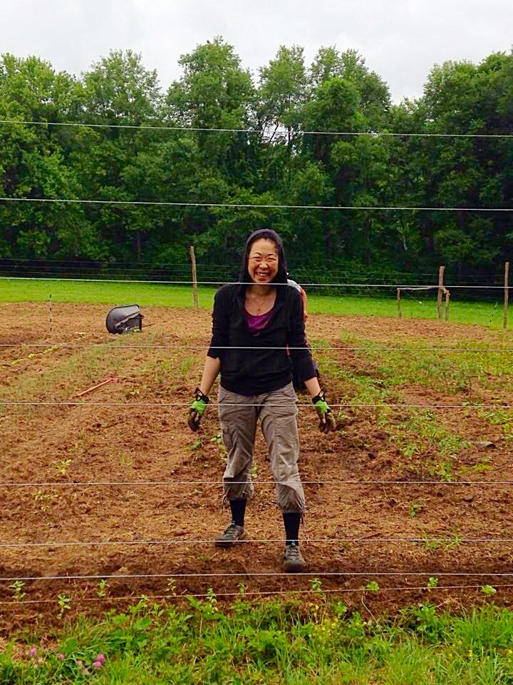 Kana learning to farm in the rain.