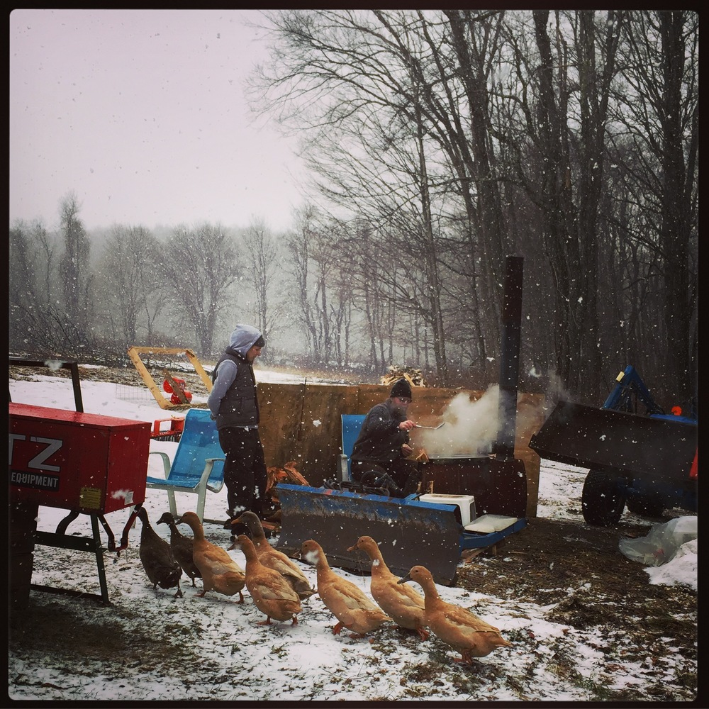 even when it's snowing the boiling continues