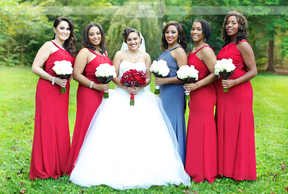 blue-palm-photography---wedding-photographer-washington-dc-16.jpg