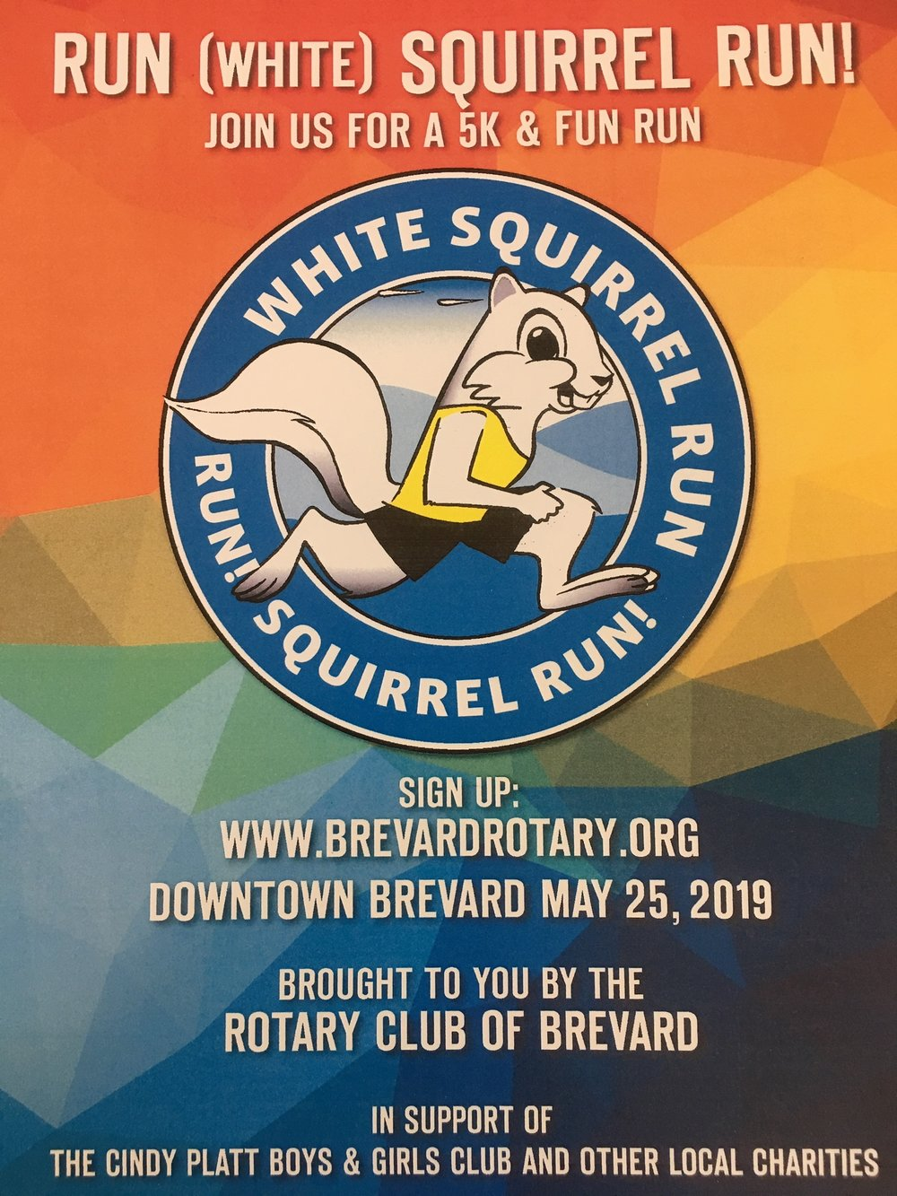White squirrel run poster.JPG