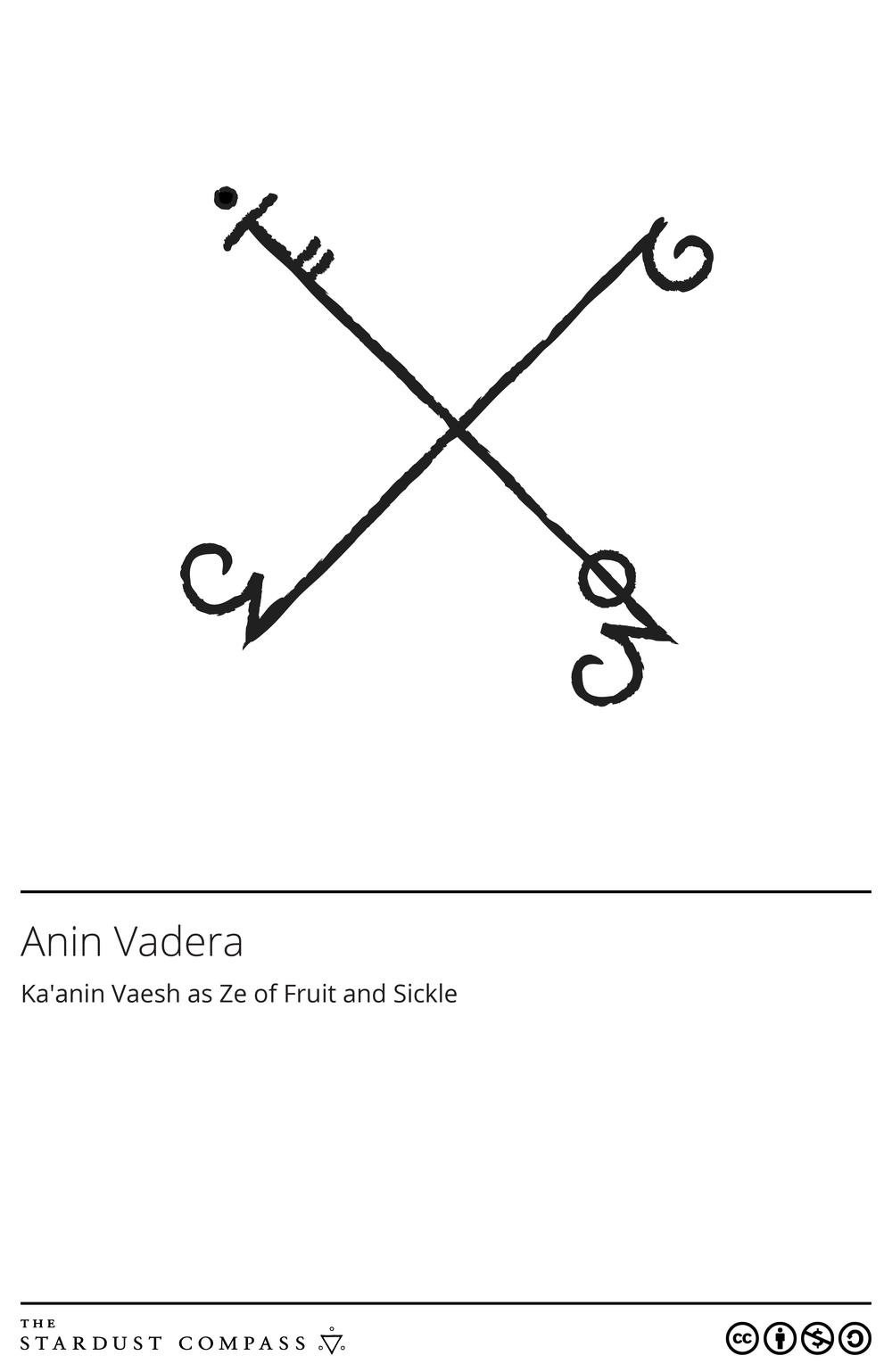Anin Vadera.png
