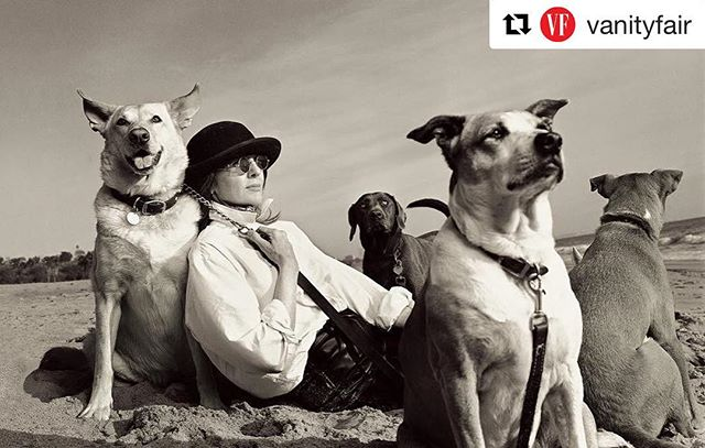 #Repost @vanityfair (@get_repost) ・・・ What would we do without dogs? 🐶 Photograph of Diane Keaton by Annie Leibovitz for V.F. July 1997. #josephlyddypetindulgence #petstyle #dogs #puppy #love #life #melbourne #dogofinstagram #puppylove