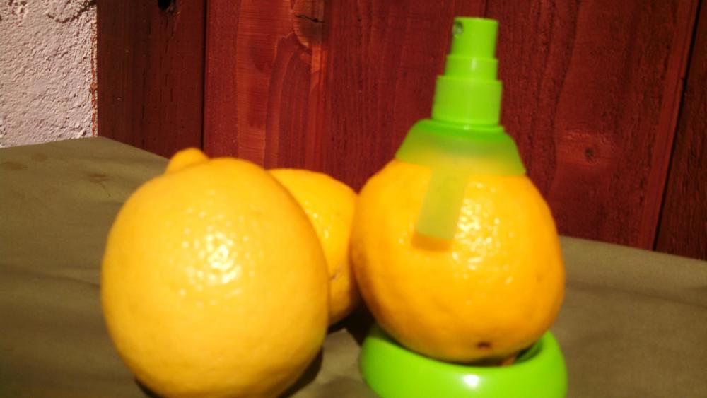 lemon mister1.jpg