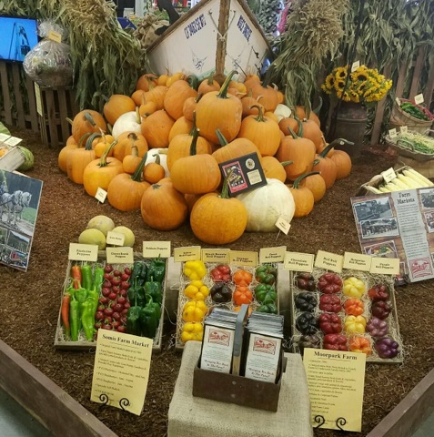 Underwood Farms always has a beautiful display
