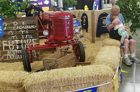 Future Farmers of America booth...Maybe this little guy is one!