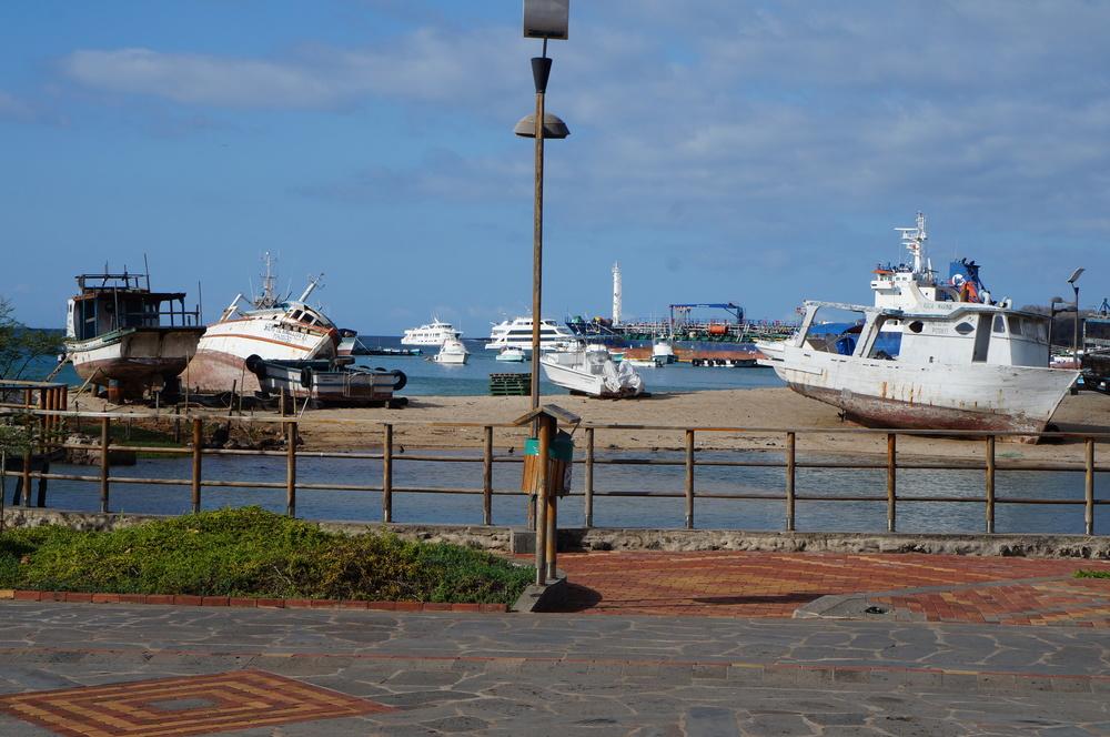 Ecuador MVI Galapagos (6).JPG