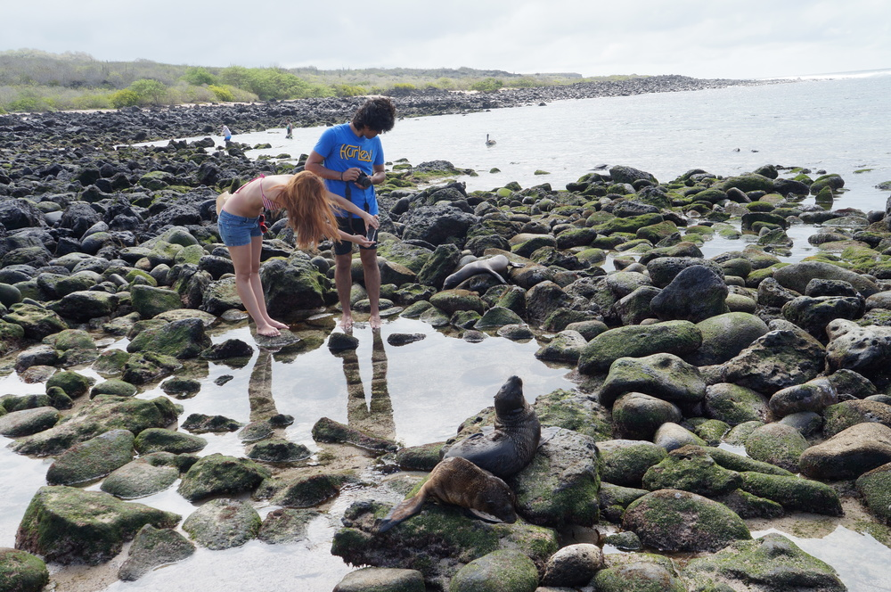 Ecuador MVI Galapagos (13).JPG