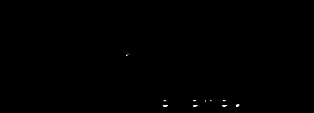 logo-PEW-1000x400.png