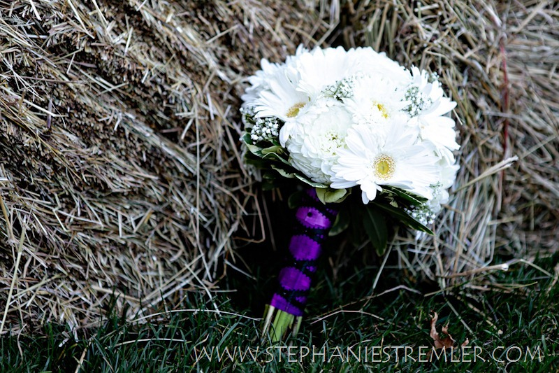 Lynden_Wedding_Photographer_Stephanie_Stremler_PhotographyW9-2-11-113