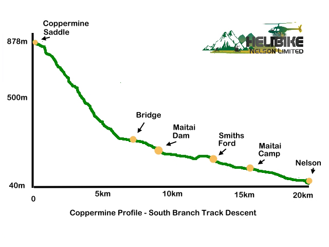 Copermine South Branch Profile_0.jpg