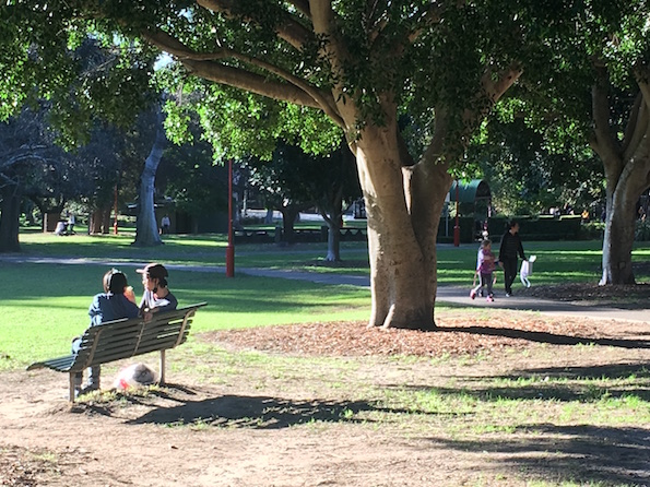 ST LEONARDS PARK MASTERPLAN COMMUNITY ENGAGE    MENT  North Sydney Council    We are delivering the community engagement for   Gallagher Studio   to inform the  ...more