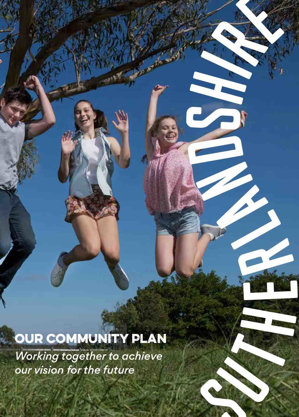 SUTHERLAND COMMUNITY STRATEGIC PLAN 2017    Sutherland Shire Council   We assisted Sutherland Shire Council in the development of their integrated  ...more