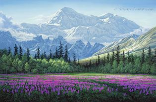 View a collection of Shane's fine art prints. Available in small, medium and large sizes.