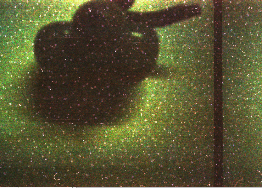 Retard [close-up]- 35mm film; 2008