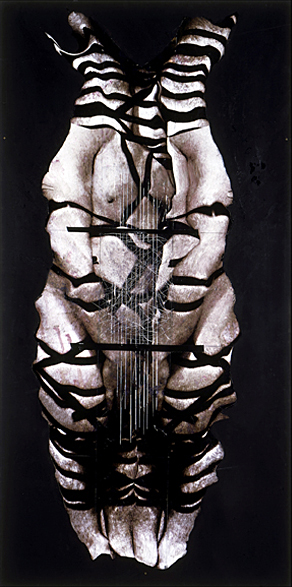 Carnevale- 96x48 in; inkjet on masonite with paint, resin, tape; 2002