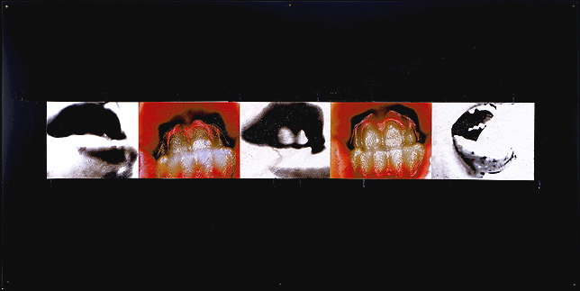 Mouths- 96x48 in; inkjet on masonite with paint, resin, tape; 2002 - Private Collection