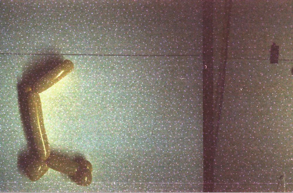 Pony Talking to Giraffe [right]  - 35mm film; 2008